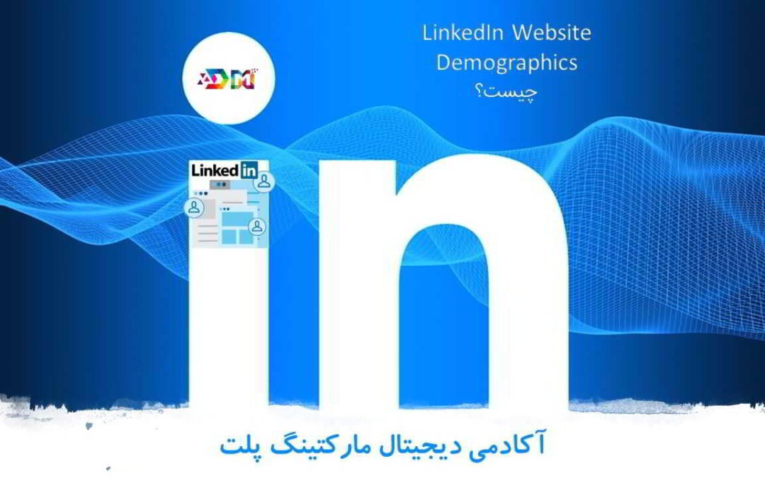 LinkedIn Website Demographics چیست | معرفی سرویسی از لینکدین جهت ساخت پرسونا