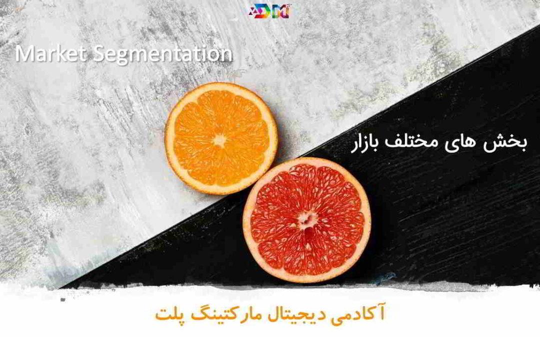 بخش های مختلف بازار Market Segment | روز چهاردهم